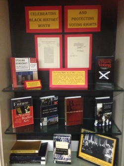 Voting Rights Act Display
